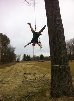 The Making of an Arborist